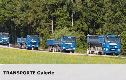 transporte-link-galerie.jpg